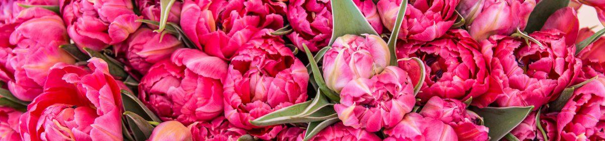 Regines Blumen und Mehr